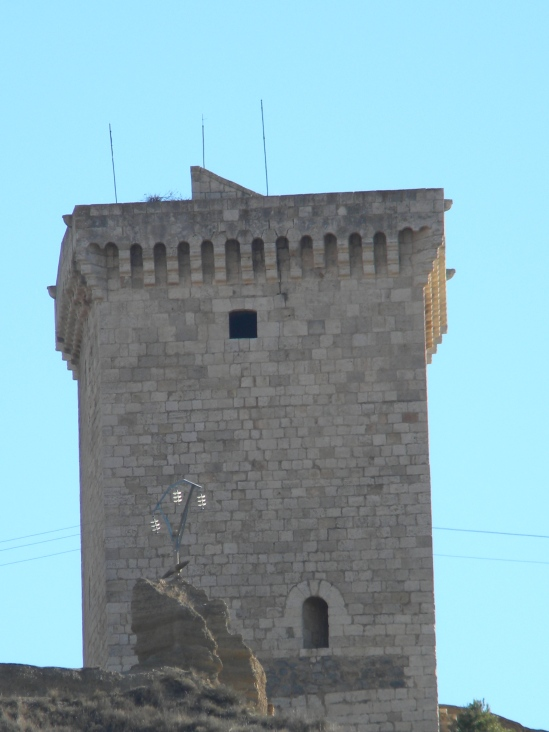 20 Torre
